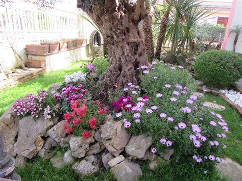 nel giardino di la primavera nel giardino di casa cancelloedarnonenews