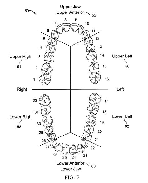 sextant of teeth patent us8267689 describing a periodontal disease state