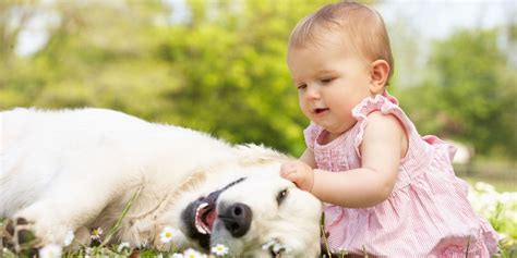 babies with puppies baby grass cover background twitrcovers