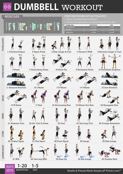 dumbbell exercises workout posters and home gyms on