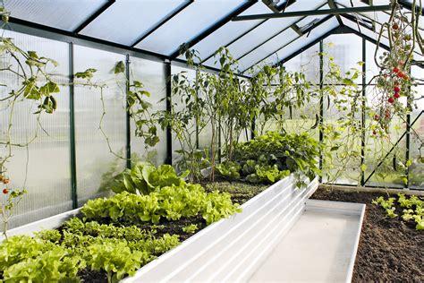 Garten Mieten Oder Kaufen by Kr 228 Utergarten Garten Terrasse Oder Als Beet Wohnen