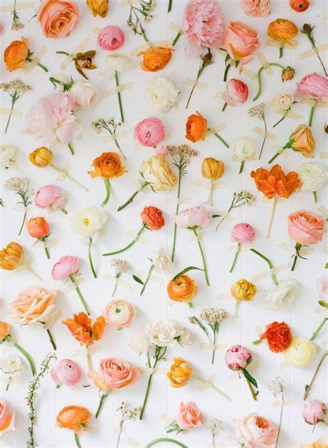 17 best images about tuscan floral on pinterest feathers 191 best beautiful flower photography images on pinterest