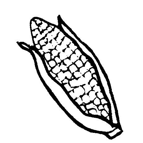 Cornstalk Coloring Pages Coloring Pages Corn Stalk Coloring Page