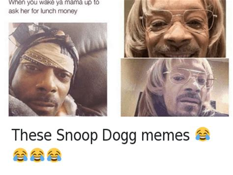 Snoop Dog Meme - top 24 snoop dogg memes thug life meme