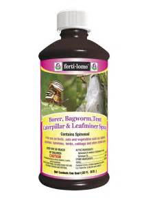 Borers In Fruit Trees - borer bagworm tent caterpillar amp leafminer spray