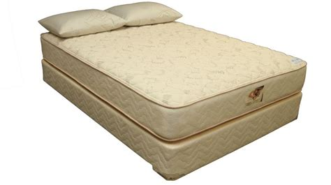 Orthopedic Mattress For Back by 1000 Images About Spine On Back Spine