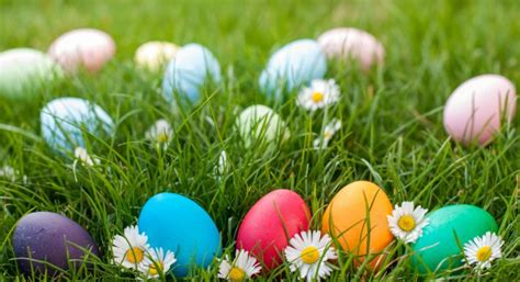 easter colors 2017 triad easter egg hunts 2017 triad moms on main