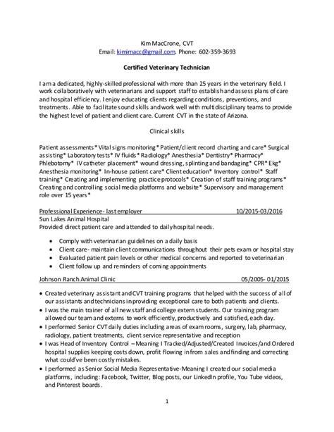 professional resume sle 2016 professional resume 2016