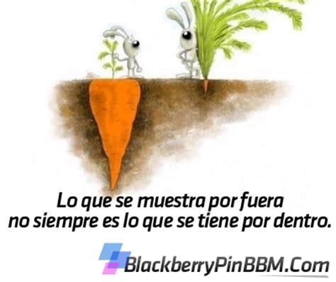 imagenes sorprendentes para pin fotos para el pin de blackberry bbm taringa