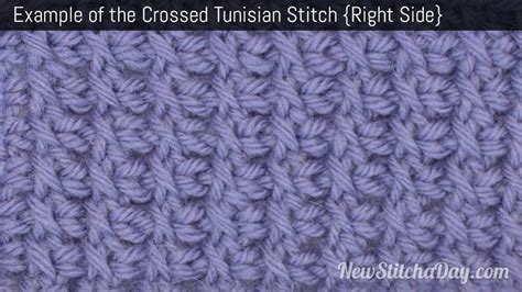 tunisian crochet complete and easy guide to awesome tunisian crochet patterns and projects tunisian crochet book crochet stitches books how to tunisian crochet the crossed tunisian stitch