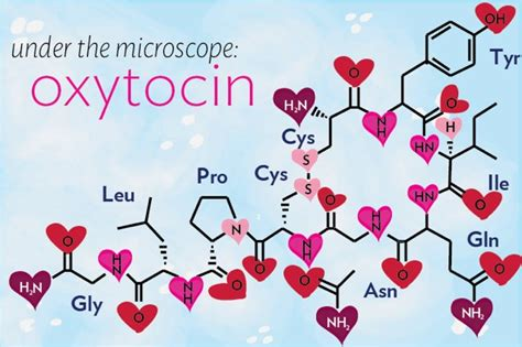 darpa researching oxytocin 187 darkgovernment