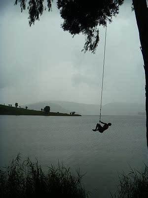 epic rope swing pinterest discover and save creative ideas