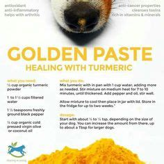golden paste for dogs try the golden paste recipe for your many experts agree that turmeric works well