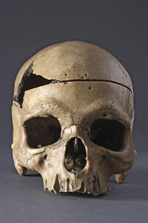 962 best bones skulls skeletons images on