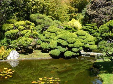 pini nani da giardino fontane giapponesi da giardino fontana solare da giardino
