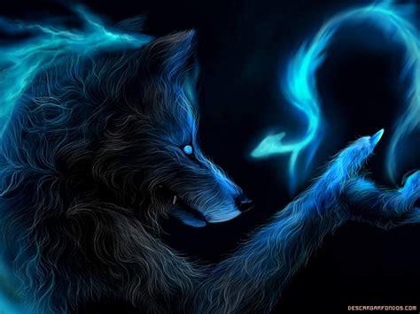 imagenes full hd de lobos lobo wallpapers wallpapersafari