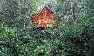 Online Planner Free book the canopy rainforest treehouses and wildlife