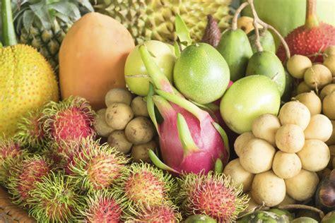 fruit l anone anone bienfaits et qualit 233 s nutritives ooreka