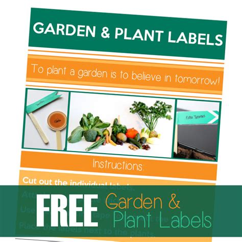 printable plant labels printable garden and plant labels