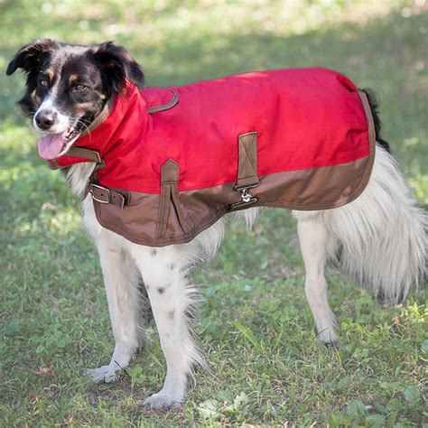 outside dogs fashion pet outdoor blanket coat coats
