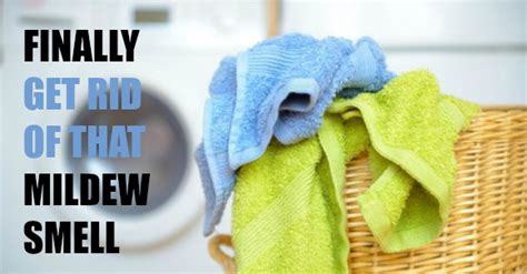 how to get rid of musty smell in furniture how to get rid of mildew smell with just 1 ingredient