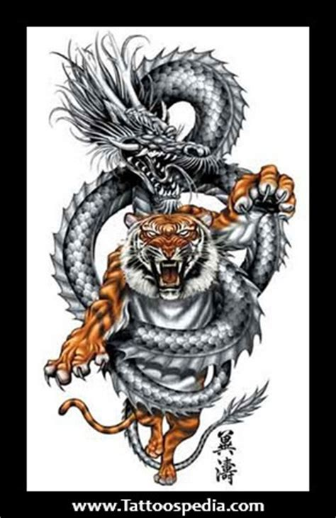 tattoo dragon vs tiger tiger vs dragon tattoos designs