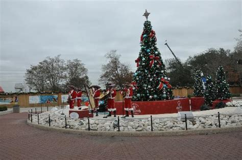 christmas decorations picture of seaworld san antonio