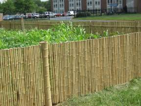 bamboo fencing landscaping gardening ideas