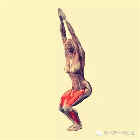 Chair Yoga Videos 瑜伽基本动作十二式 瑜伽基本12式动作讲解 汇潮装饰网