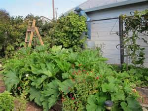 Best Summer Garden Vegetables - summer garden