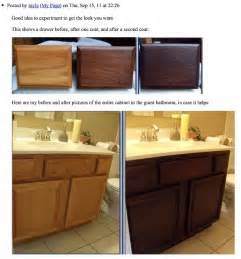 How To Gel Stain Kitchen Cabinets 17 Best Ideas About Updating Oak Cabinets On Pinterest
