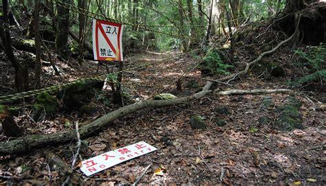 bosque aokigahara el bosque de los suicidios malditos el bosque siniestro conoce aokigahara el verdadero lugar en que se inspir 243 la pel 237 cula fotos