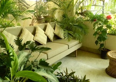 apartment plants ideas wood plant balcony garden ideas mumbai