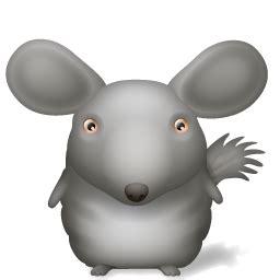 chinchilla icon animals iconset turbomilk