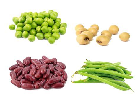 e proteina alimentos ricos em prote 237 nas