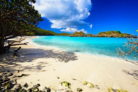Most Popular Favorite Colors by Secluded Beach By George Oze