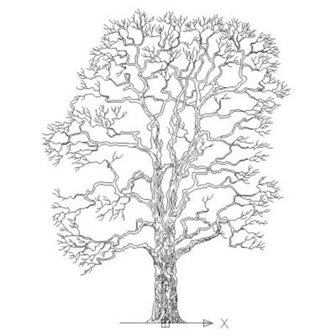 tree templates for autocad image gallery tree dxf