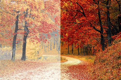 photoshop color correction outsource photoshop color correction services flatworld