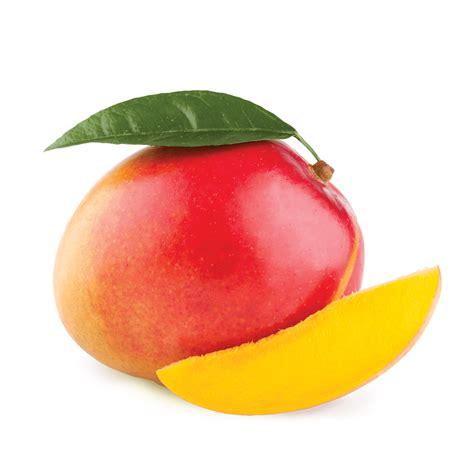 Js Manggo tropical mango hookah tobacco fumari
