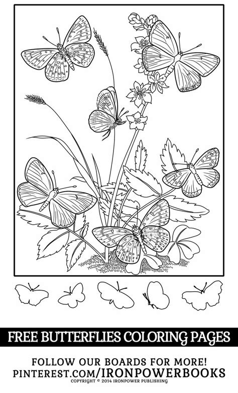 libro rebel colouring for girls mejores 631 im 225 genes de creative coloring pages en p 225 ginas para colorear libros