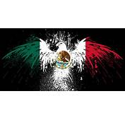Mexico Flag Twitter Cover &amp Background  TwitrCovers