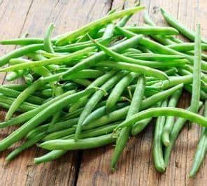 Jual Bibit Kacang Okra jual benih bibit tanaman buncis murah lengkap bibit