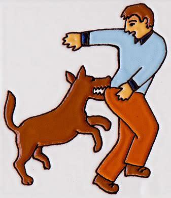 why puppies bite why bite