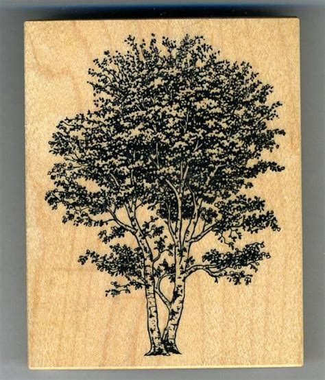 birch tree rubber st 1000 images about rubber sts of trees on
