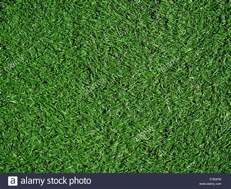 Grass Top by Grass Field Top Www Pixshark Images Galleries With