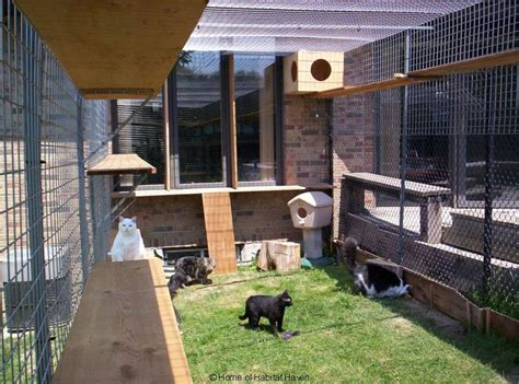 safe friendly cat  dog enclosures home  habitat