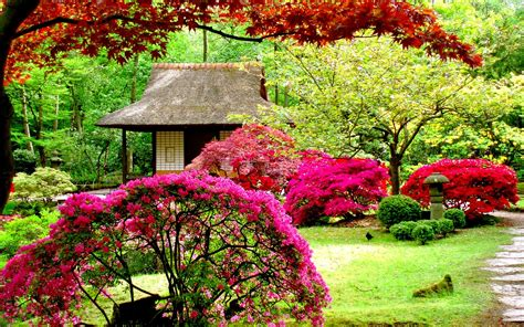 Gardens Hd Wallpapers Garden Wall Paper