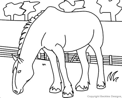 shetland pony coloring pages coloring pages