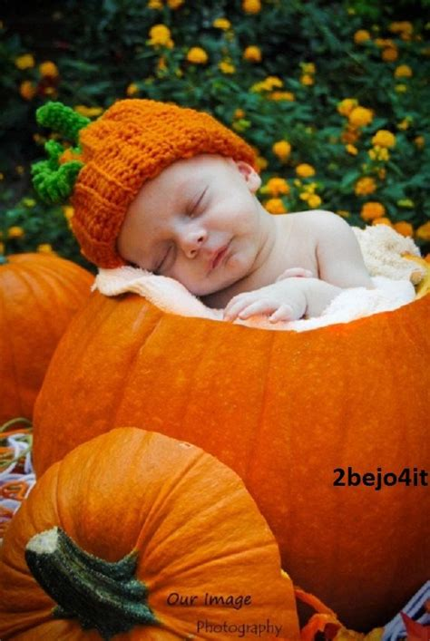 baby pumpkin newborn infant baby boy pumpkin hat photo