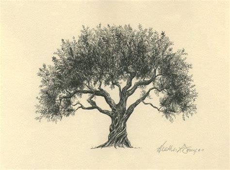 25 trending olive tree tattoos ideas on pinterest tree